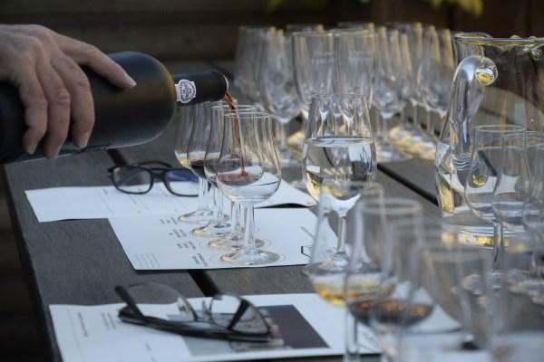 Vinblogger tester vin - Test vin fra Vinoli.dk