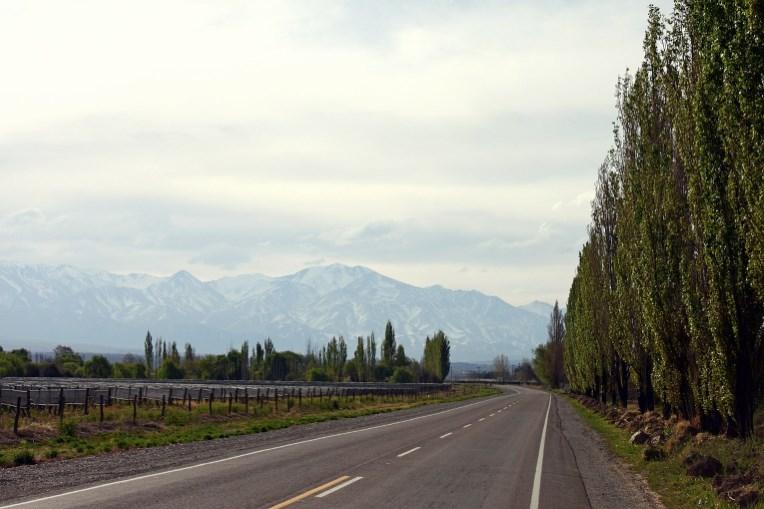 Mendoza vin - Argentina - Andesbjergene