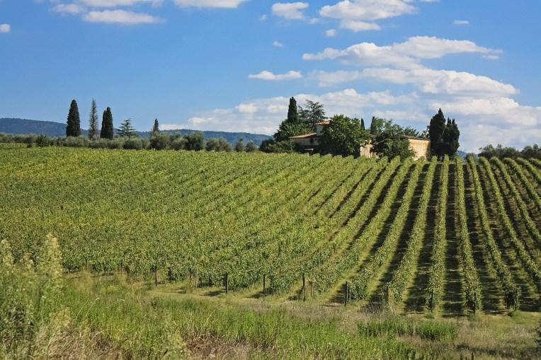 Toscana vin